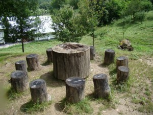 lemn 4